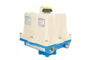 Rotary Electric Actuators