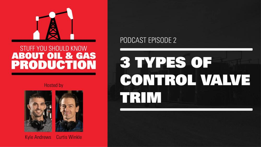 3 Types of Control Valve Trim | Podcast Ep. #2